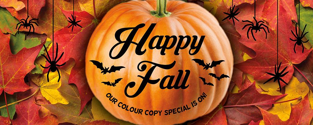 Fall sale pumpkin